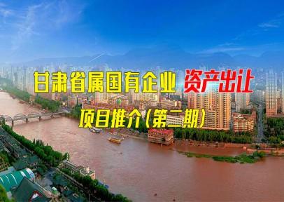 甘肃省属国有企业资产出让项目推介(第二期)