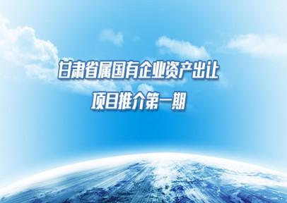 甘肃省属国有企业资产出让项目推介(第一期)
